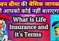 What is Life Insurance and it's terms